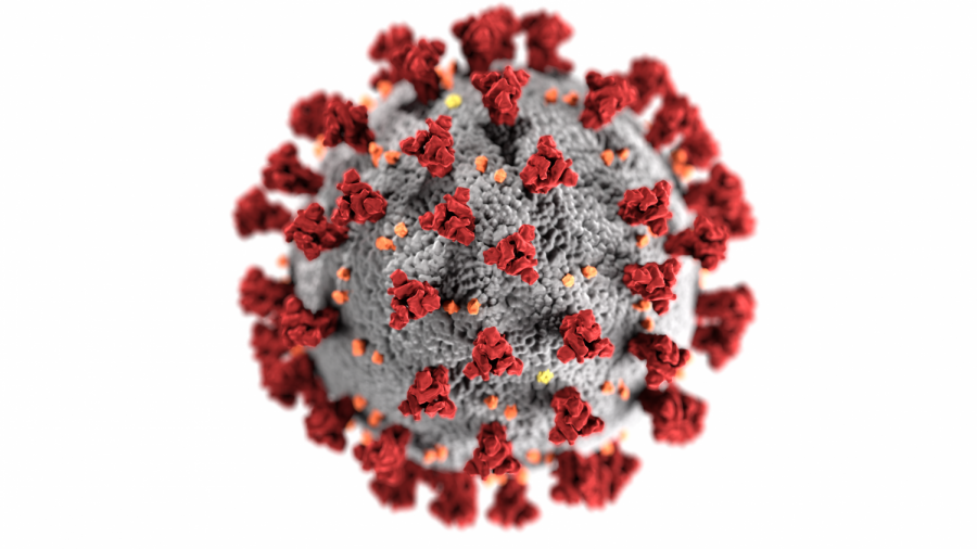 Illustration of coronaviruses' composition. architecture  and form by the Centers for Disease Control.